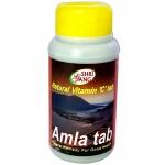 Амла Shri Ganga 100 табл